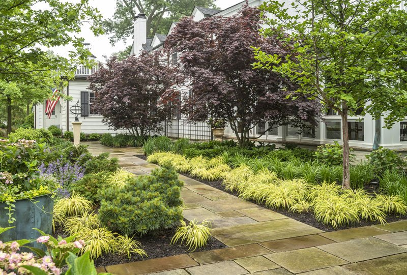 Perennial garden by Site Design Pros